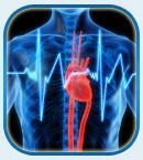 Способ саморегенерации сердца